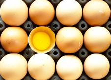 Free Eggs Royalty Free Stock Photography - 31741257