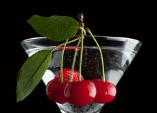 Free Cherries In A Martini Glass. Stock Photography - 31750862