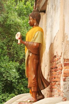 Free Buddha Image Stand Front Of The Temple In Ayutthaya Stock Photos - 31761813