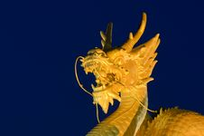 Free Golden Dragon Head With Blue Background Stock Photography - 31766272