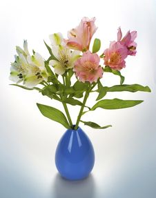 Free Flower Vase Royalty Free Stock Images - 31771199