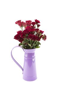 Free Red Flowers Stock Image - 31771661