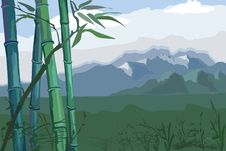 Free Landscape With Bamboo Royalty Free Stock Images - 31776579