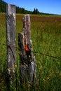 Free Idaho Fence 3 Royalty Free Stock Images - 3180649