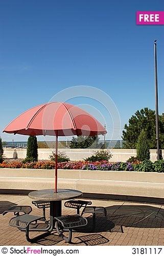 Free Providing Shade On A Sunny Day Royalty Free Stock Photography - 3181117