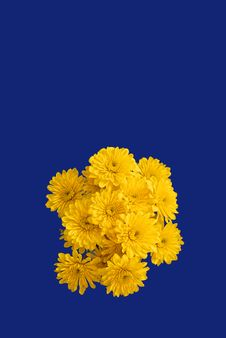 Free Bouquet Of Yellow Flowers Royalty Free Stock Image - 3180586