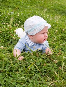 Baby On The Clover Meadow Stock Photo