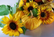 Free Pumpkins With Sunflowers Royalty Free Stock Photography - 3182007