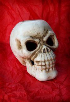 Free Skull-dead Stock Image - 3182271