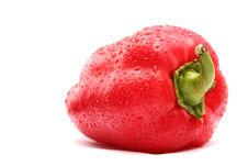 Free The Bulgarian Pepper Stock Photography - 3182372