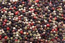 Peppercorns Royalty Free Stock Image