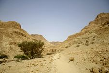 Free Desert Landscape Royalty Free Stock Photos - 3182718