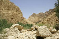 Free Desert Landscape Stock Image - 3183011