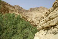 Free Desert Landscape Royalty Free Stock Image - 3183586