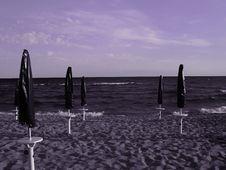 Free Purple Beach Stock Photography - 3184142