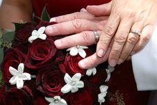 Free Our Rings Stock Photography - 3186382