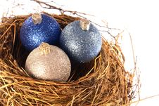 Free Christmas Nest Eggs Stock Photography - 3186752