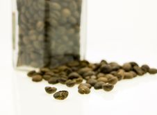 Free Coffe Jar Of Beans Stock Photography - 3187582