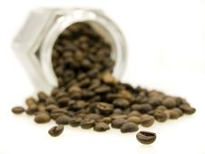 Free Coffee Jar Of Beans Royalty Free Stock Image - 3187676