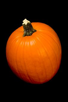 Free Pumpkin On Black Royalty Free Stock Images - 3187919