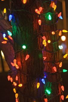 Free X-mas Lights Royalty Free Stock Photo - 3188695