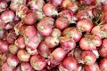 Free Pile Of Shallot Stock Photography - 31800402