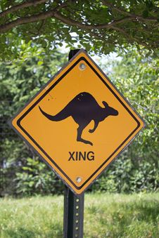 Free Kangaroo Crossing Stock Image - 31803031