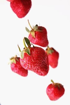 Free Strawberry Royalty Free Stock Images - 31812259