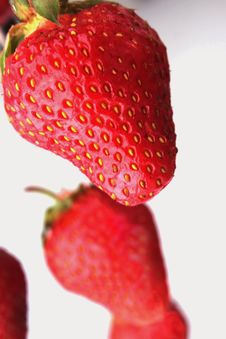 Free Strawberry Royalty Free Stock Image - 31812276