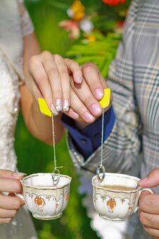 Free Wedding Rings Royalty Free Stock Photo - 31823715