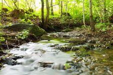 Free Woodland Stream Royalty Free Stock Image - 31825686