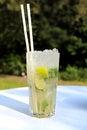 Free Cocktail Mojito Stock Image - 31851761