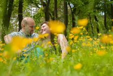 Free Sweet Lovers Between The Buttercups Royalty Free Stock Images - 31850799