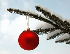 Free Red Christmas Ball Royalty Free Stock Photos - 31858558