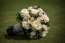 Free Roses On The Lawn Royalty Free Stock Images - 31873499