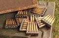 Free Gun Bullets. Royalty Free Stock Photography - 31880577