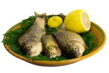 Free Three Carp On Ceramic Dish , Greens And Lemon Stock Photography - 31880822