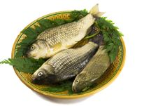 Free Three Carp On Ceramic Dish , Greens And Lemon Stock Photo - 31880910