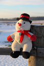 Free Funny Toy Snowman Stock Photography - 31899962