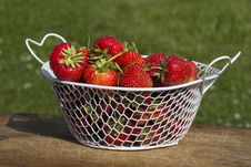 Free Strawberries Or Raspberries Cantaloupe Lat. Fragária Moschátaa. Stock Images - 31893614