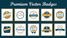 Free Premium Vector Badges Stock Photography - 31897622