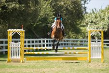 Free Horse Jumping Stock Photos - 3190773
