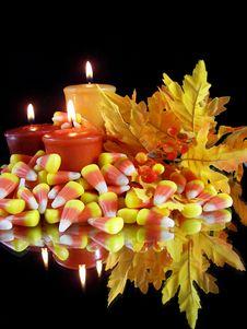 Free Autumn Warmth Stock Image - 3191591