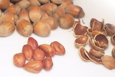 Free Food Background With Hazelnuts Stock Photo - 3192370