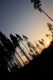 Free Askew Sunset Royalty Free Stock Photos - 3192418