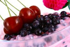 Yogurt Blueberries Royalty Free Stock Photography