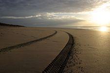 Tracks On A Beach Royalty Free Stock Photo