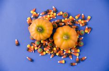 Free Pumpkins And Candy Royalty Free Stock Images - 3193369