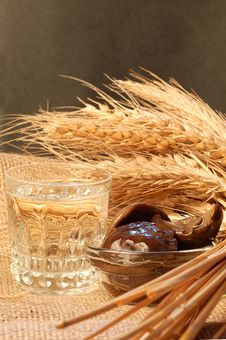 Free Russian Vodka Naturmort Stock Images - 3193404
