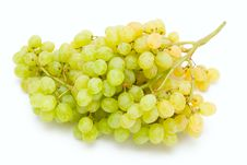 Free Grapes Royalty Free Stock Images - 3195649